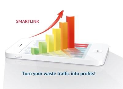 smartlinkintoprofits.1495013504
