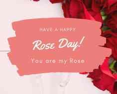 Red rose status in English