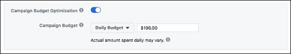 The Campaign Budget Optimization Facebook options