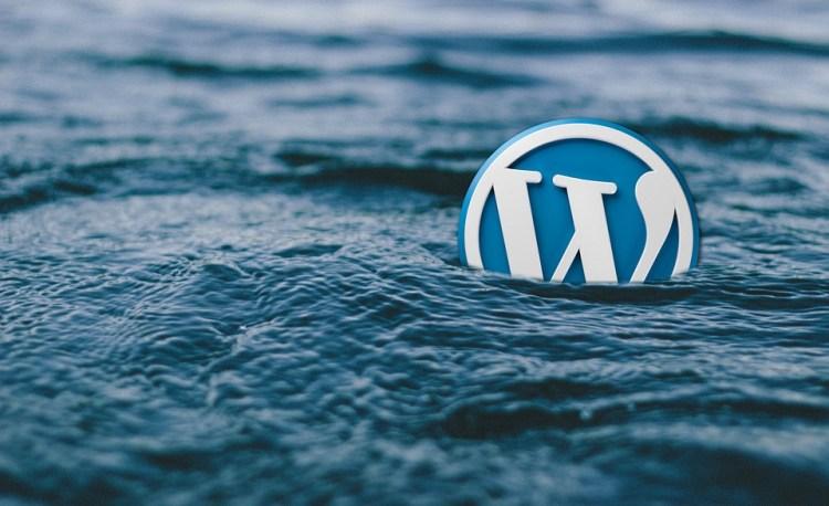 WordPress Developers in PRetoria