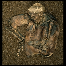 Image of the Lindow man bog body, discovered in a Cheshire, England bog in 1994, now in the British Museum