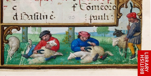 Sheep-shearing as one of the labors of June, from the British Library's Golf Book.