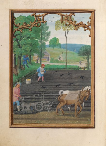 Image for September from the Da Costa Hours showing a man with a horse team plowing, a man seeding the field as crows eat the seed, and another man knocking down nuts from trees for the pigs below.