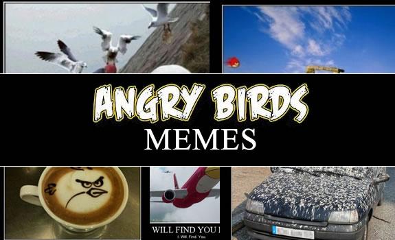 angry-bird-memes