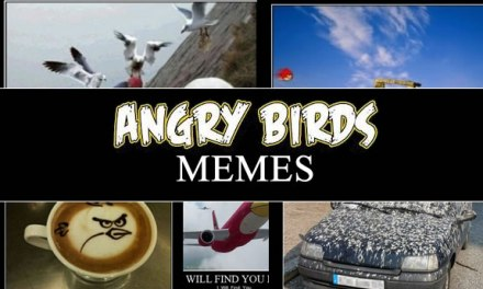 5 Angry Birds Memes That Will Make You LOL