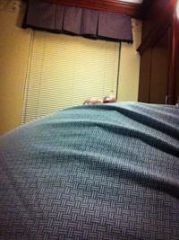 baby bump
