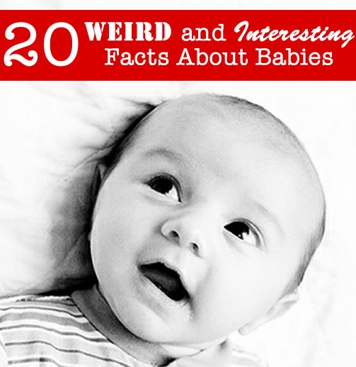 Babies Are Weird Interesting Creatures