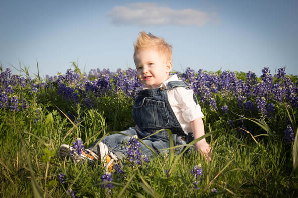 Zeke in the bluebonnets