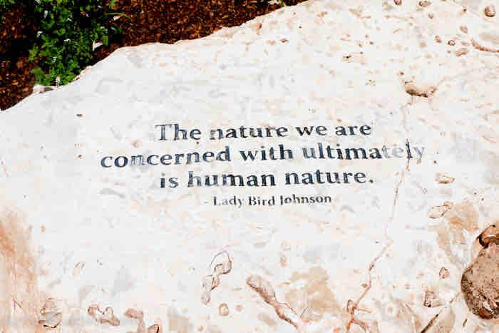 lady bird johnson wildflower center in austin, tx