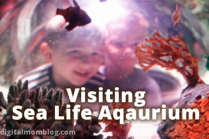 Visiting Sea Life Aqauarium