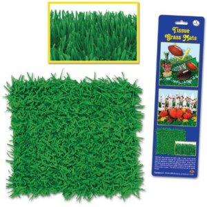 minecraft-party-grass
