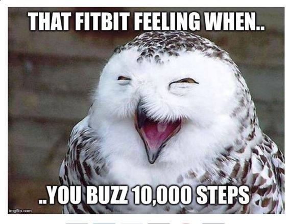 fitbit memes 7 - 50+ Hilarious Fitbit Memes - Share These With Your FitBit Friends!