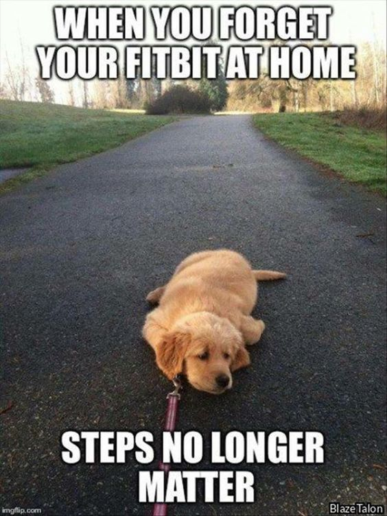 fitbit memes 8 - 50+ Hilarious Fitbit Memes - Share These With Your FitBit Friends!