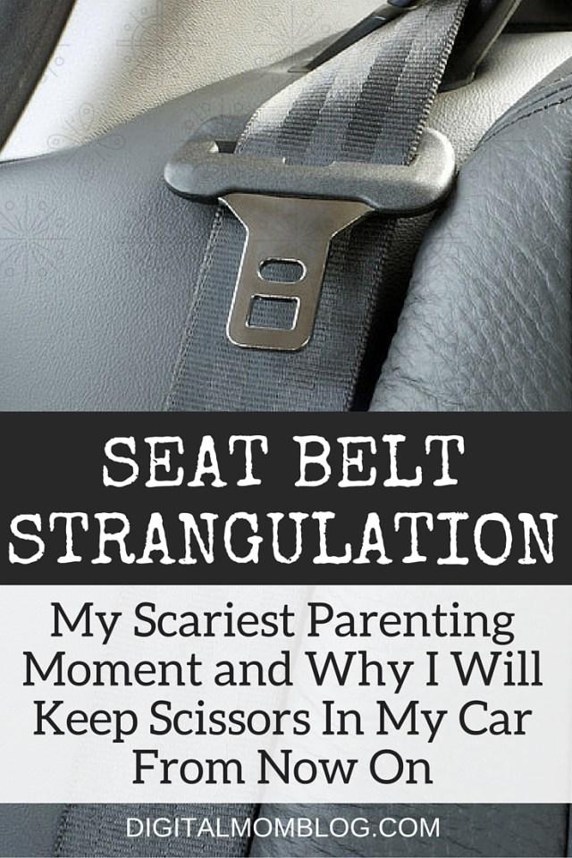 Seat Belt Stangulation