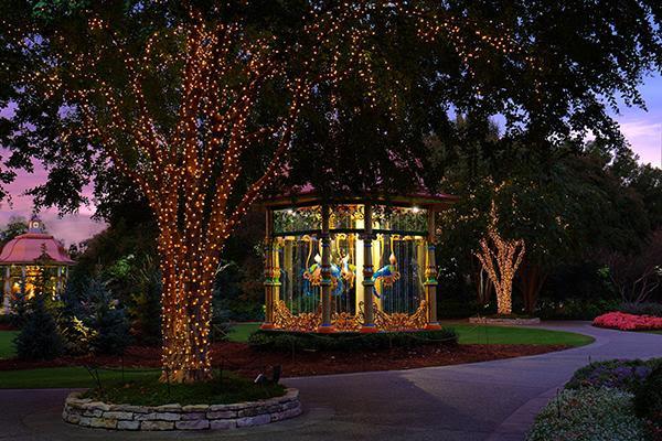 dallas arboretum - christmas family dallas
