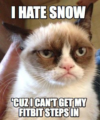 fitbit meme angry cats - 50+ Hilarious Fitbit Memes - Share These With Your FitBit Friends!