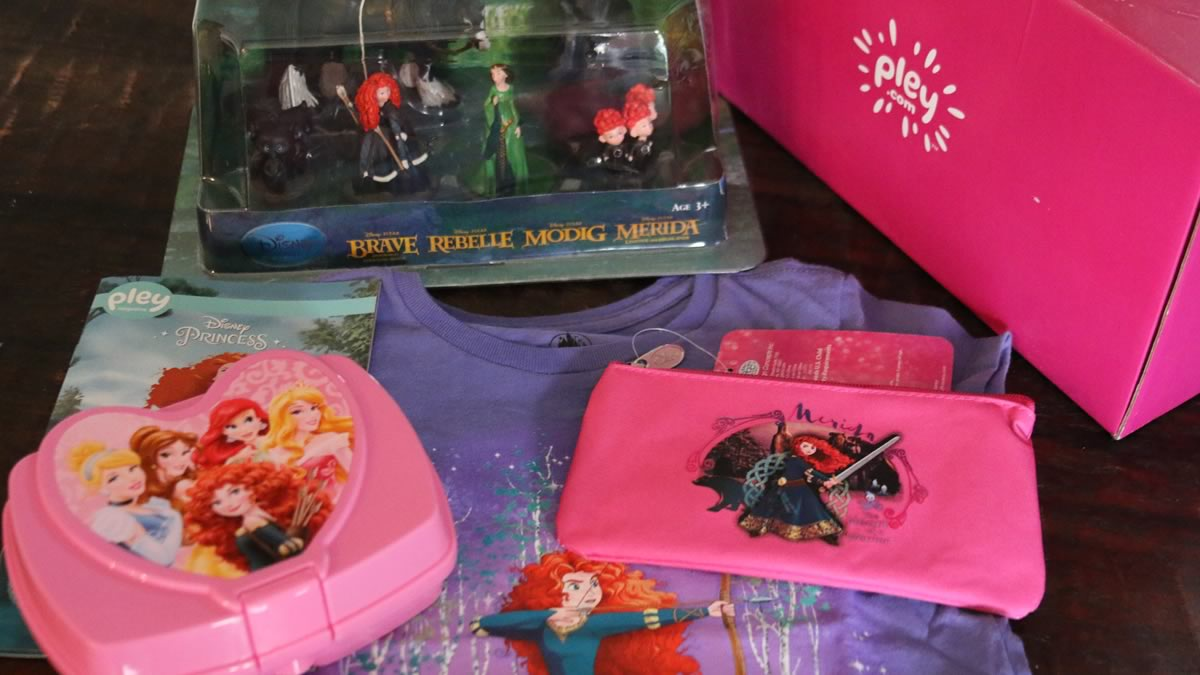 Disney Subscription Box Review