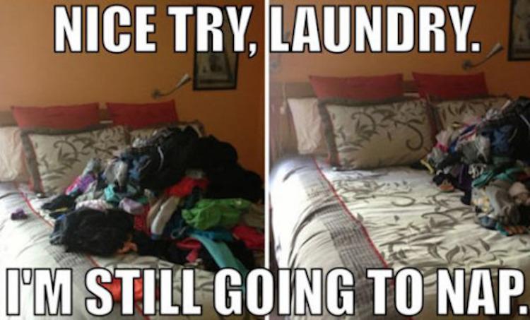 laundry nap meme