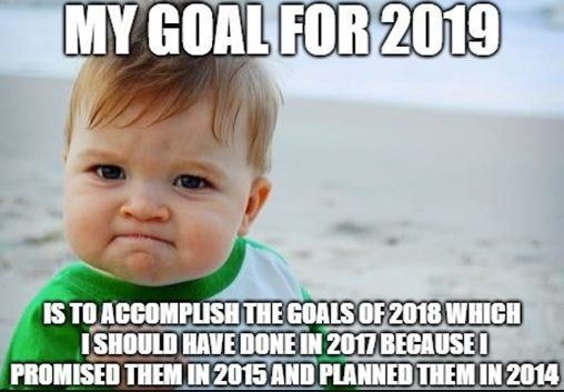 My goals for 2019 is to accomplish the goals of 2018 which I should have done in 2017 because I promised them in 2015 and planned them in 2014.