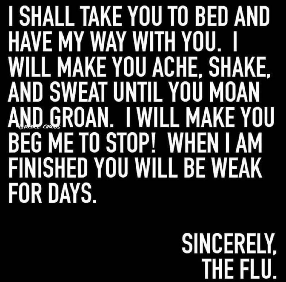 I shall take you to bed and have my way with you. I will make you ache, shake, and sweat until you moan and groan. I will make you beg me to stop! When I am finished you will be weak for days. Sincerely, the flu.