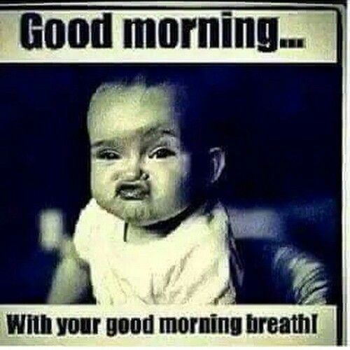 Good Morning Breath Meme