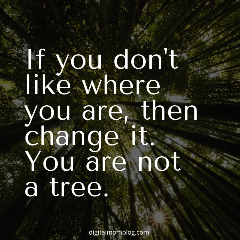 If you don't like where you are, then change it. You are not a tree.