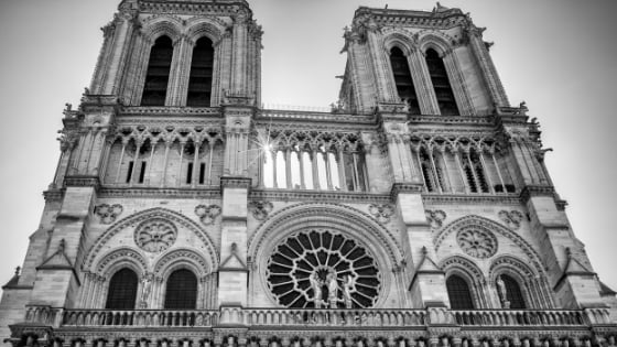 notre dame church cathedral