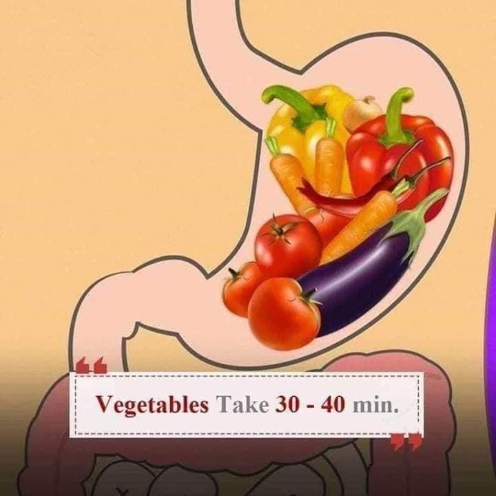 easy digestive health tips