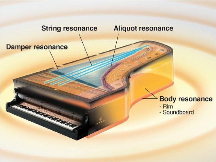 Yamaha P515 digital piano