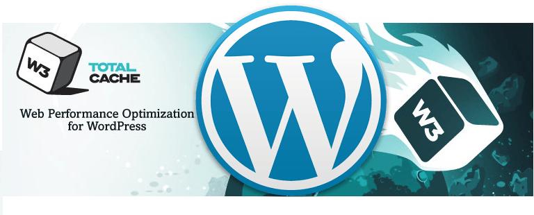 W3 Total Cache Manual Minify WordPress HTML, JavaScripts