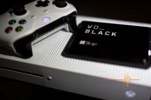 WD_ Black HDD Review - For PC or Console