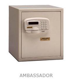 Ambassador Wall Safe
