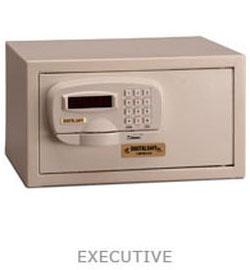 Executive Vault Safe Denver