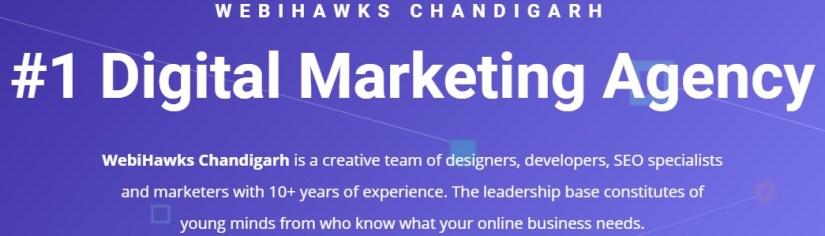 WebiHawks: Digital Marketing Agency in Chandigarh