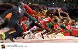 Robert Mugabe falls