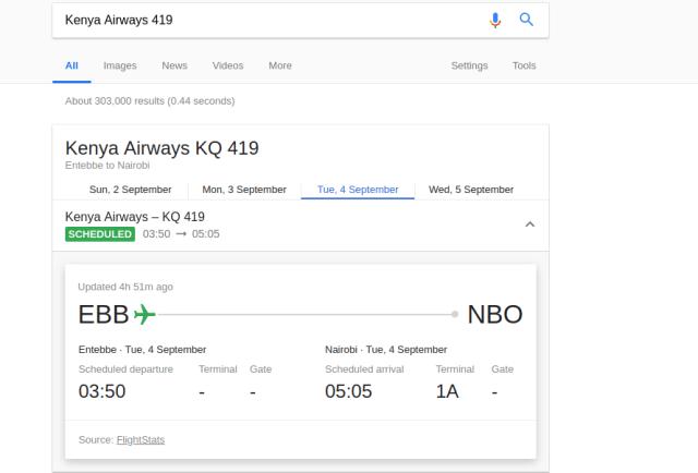 flight checker Google search