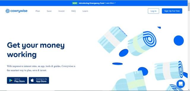 cowrywise website