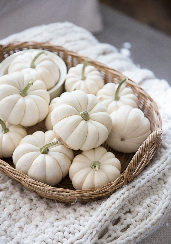 a basket with white pumpkins placed on a white knit blanket is a very cozy Fall Décor Ideas