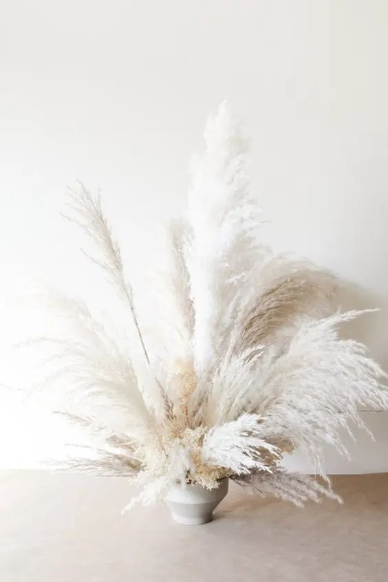a vase with white pampas grass is a trendy and chic decoration for the fall and not only