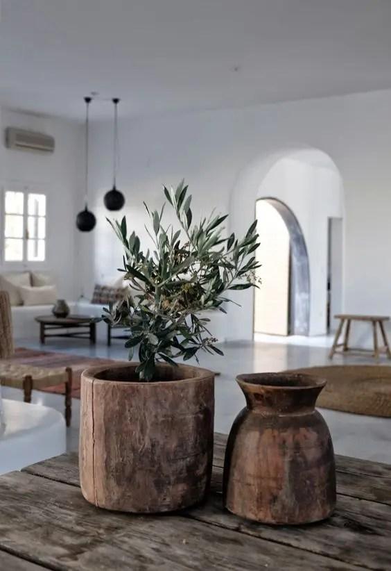 Good Large Indoor Plants