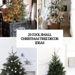 25 Cool Small Christmas Tree Decor Ideas Digsdigs