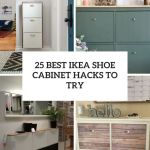 25 Best Ikea Shoe Cabinet Hacks To Try Digsdigs