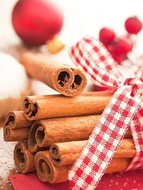 38 Aromatic Cinnamon Dcor Ideas For Christmas DigsDigs