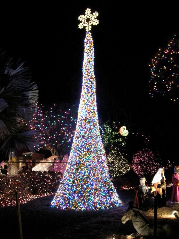 christmas lights miami # 80