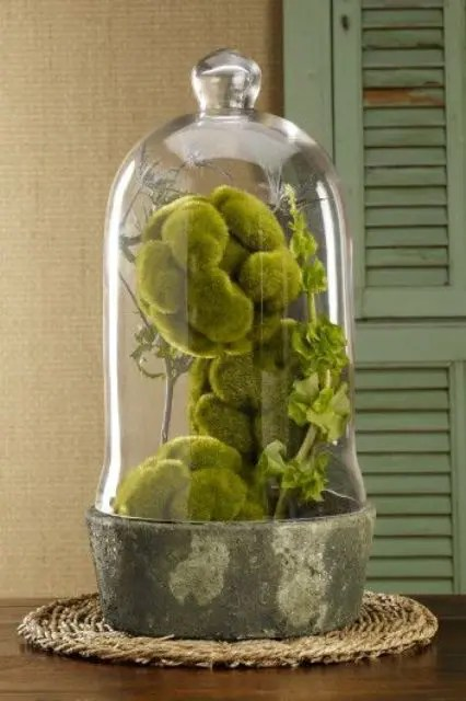 Moss Also Makes For A Great Addition To Any Display Whether Is Be Your Cake Table Guest Book Or The Dinner It Brings Pop Of Forest