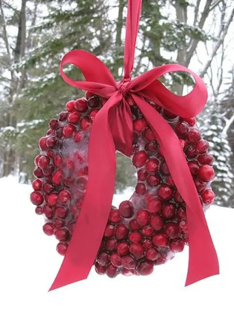 46 Cranberry Christmas D 233 Cor Ideas Digsdigs