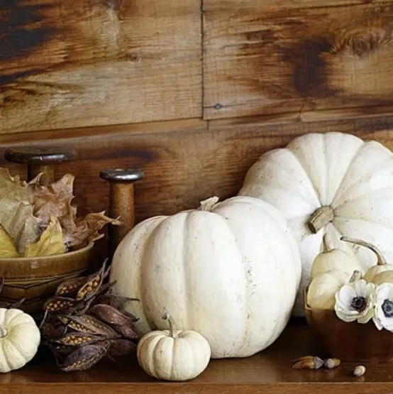 put white pumpkins, white blooms and fall leaves and berries to create a simple and natural fall decoration
