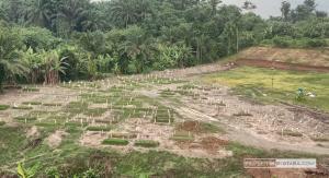 Ziarah ke Makam Pasien Covid-19 di Simalingkar, Bayar APD Rp20 Ribu Ketua Pansus Covid-19