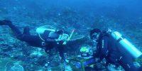 Indonesia Makin Serius Garap Sumber Energi Listrik Arus Laut