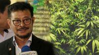 Syahrul Yasin Limpo Diangkat Sebagai Menteri Kelautan dan Perikanan